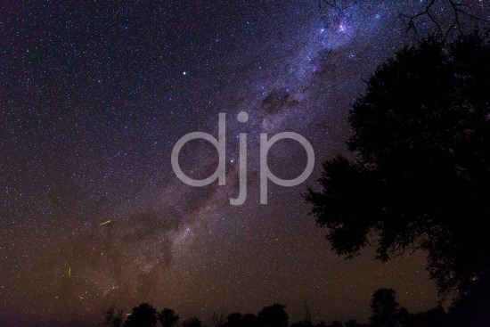 Milky Way over Botswana I