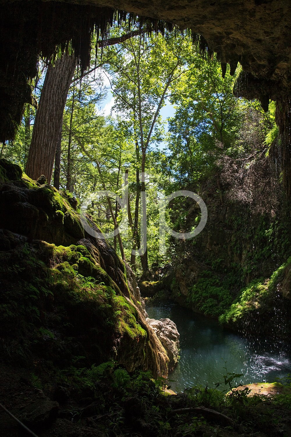 Central Texas, D Jones Photography, West Cave, djonesphoto, green, hiking, texas, waterfall, blue