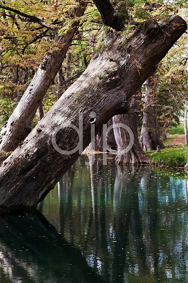 WImberly Blue Hole, djonesphoto, hiking, texas, D Jones Photography