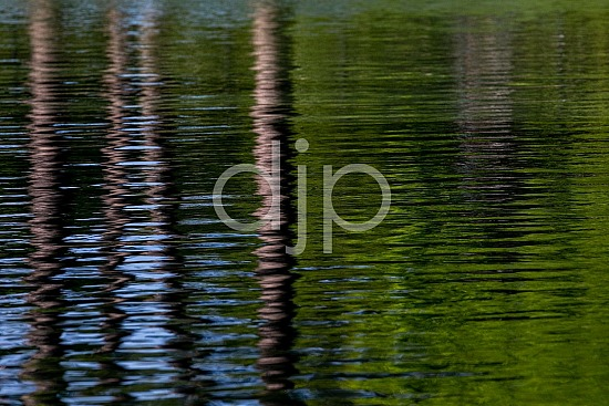 D Jones Photography, Sugar Land, djonesphoto, excursions with djp, personal, quarantine, reflections, textures, water, abstract