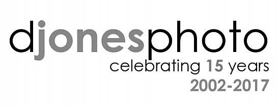 Celebrating 15 Years of D. Jones Photography